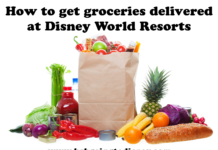 grocery delivery at disney world