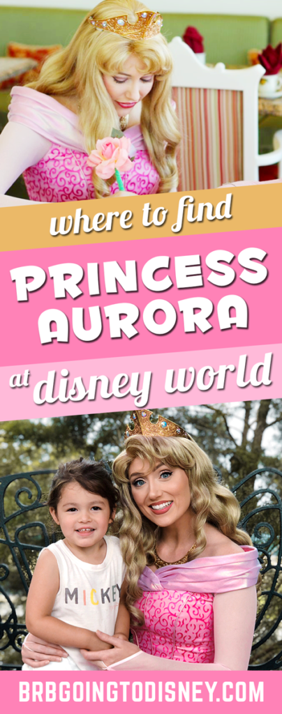 Where to find Sleeping Beauty at Disney World
